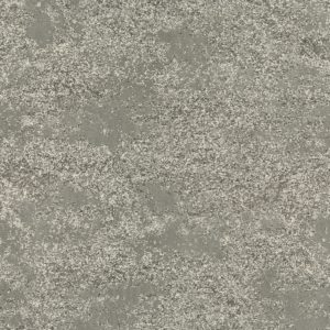 00545 Wet Concrete